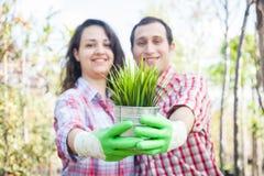 Gardeners Stock Images