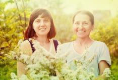 Gardeners in meadowsweet plant. Female gardeners in meadowsweet plant at spring garden Stock Photo