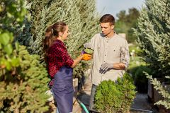 Gardeners in the nursery-garden on a warm sunny day. Girl gardener shows it a guy plant in the pot standing on the royalty free stock photo