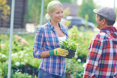Gardeners talking Stock Photos
