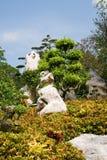 gardeni n tropiska thailand arkivbild