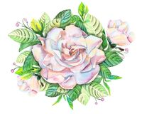 Gardenia flower bouquet, watercolor handmade