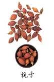 Gardenia Fruit Stock Photos