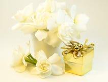 Gardenias Stock Photography