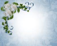 Gardenias de la frontera de la invitación de la boda Imágenes de archivo libres de regalías
