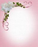 Gardenias del bordo dell'invito di cerimonia nuziale   Fotografia Stock