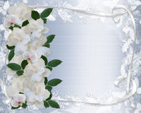 Gardenias und Spitze-Hochzeits-Einladung Lizenzfreies Stockbild