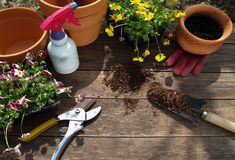 Gardening 1. Gardening tools on wormy chestnut garden table. North Carolina Stock Photo