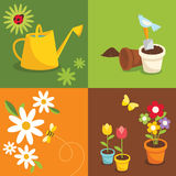Gardening. Various garden supplies, flowers, birds, bee and ladybug Stock Photography