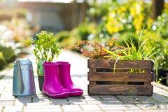 gardening stockbild