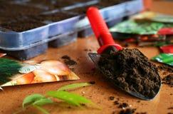Free Gardening Stock Image - 13389351