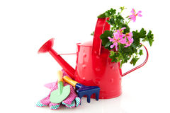 Gardening. With watering can and work tools Royalty Free Stock Photography