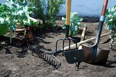 Gardening. Tools needed to do a garden Stock Photography