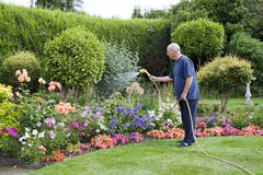Gardening. View of a senior male watering the flower garden Stock Photo