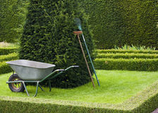 Gardening. Garden tools placed neatly upright in a  tudor style knot garden with copy space Royalty Free Stock Image