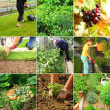 Gardening. Collection of garden images - composting, cutting grass, watering stock photos