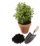 Gardening Royalty Free Stock Photo