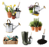 Gardening. Tools and flowers isolated on white royalty free stock photos