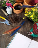 Gardening 2. Gardening tools on wormy chestnut garden table. North Carolina Royalty Free Stock Image