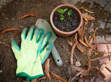 Gardening. Image of gardening tools and planter Stock Photos
