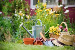 Gardening stock photography