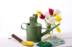 Gardening. Colorful tulips , globes, shovel and watering can Stock Photo