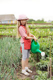 Gardening. An image of a nice girl with a water can stock photo