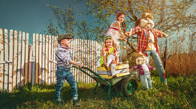 gardening Lizenzfreie Stockbilder