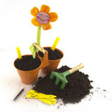 Gardening. With flowers in the summer Royalty Free Stock Photo