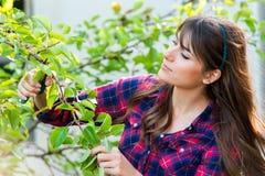 Free Gardening Stock Photos - 57018063