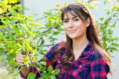 Free Gardening Royalty Free Stock Photo - 57018245