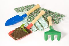 Gardening. Stock Image