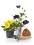 Gardening Royalty Free Stock Photo