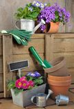 Gardening accessories Stock Image