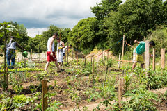 Gardening activities in a German refugee camp Stock Images