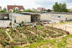 Gardening activities in a German refugee camp Stock Photography