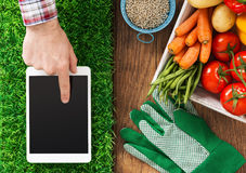 Gardening app. Digital tablet on grass, fresh vegetables and farmer's hand touching the touch screen display, gardening and farming app concept stock photos
