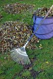 Gardening in autumn Royalty Free Stock Image