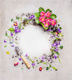 Gardening background with shovel and garden flowers on gray stone background, top view Royalty Free Stock Photos