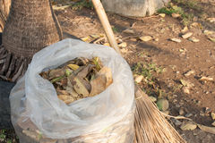 Gardening with bag of dry leaves and broom Stock Image