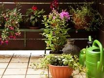 Gardening on the balcony Royalty Free Stock Photos