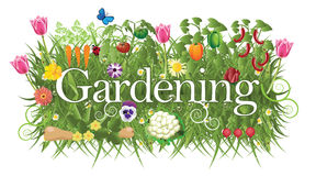 Gardening banner with grass, flowers and vegetable royalty free illustration