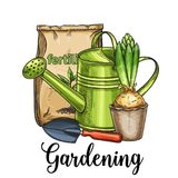 Gardening banner. Hand drawn gardening banner. Watering can, fertilizer, hyacinth and garden tool in sketch style. Vector illustration stock illustration