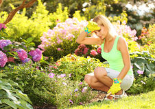 Gardening. Blonde woman planting flowers in garden Royalty Free Stock Image