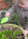 Gardening child Stock Images