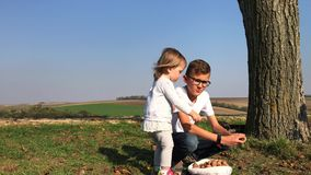 Gardening: children with father gather walnuts from ground. Gardening: children and man gather ripen walnuts on ground under tree in autumn. Family members stock video footage