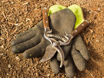 Gardening Clippers and Gloves Royalty Free Stock Photo