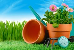 Gardening concept Stock Photography