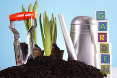 Gardening Concept! Royalty Free Stock Image