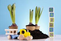 Gardening Concept! Royalty Free Stock Photos